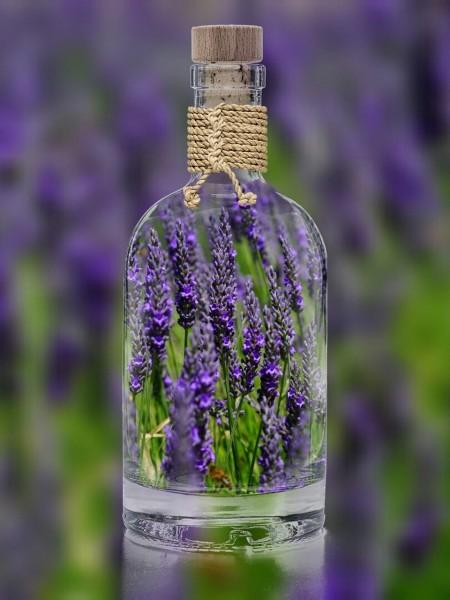 lavendel_flasche577a290091cb8